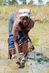 Die Reisbäuerin Atogetege aus Kapania